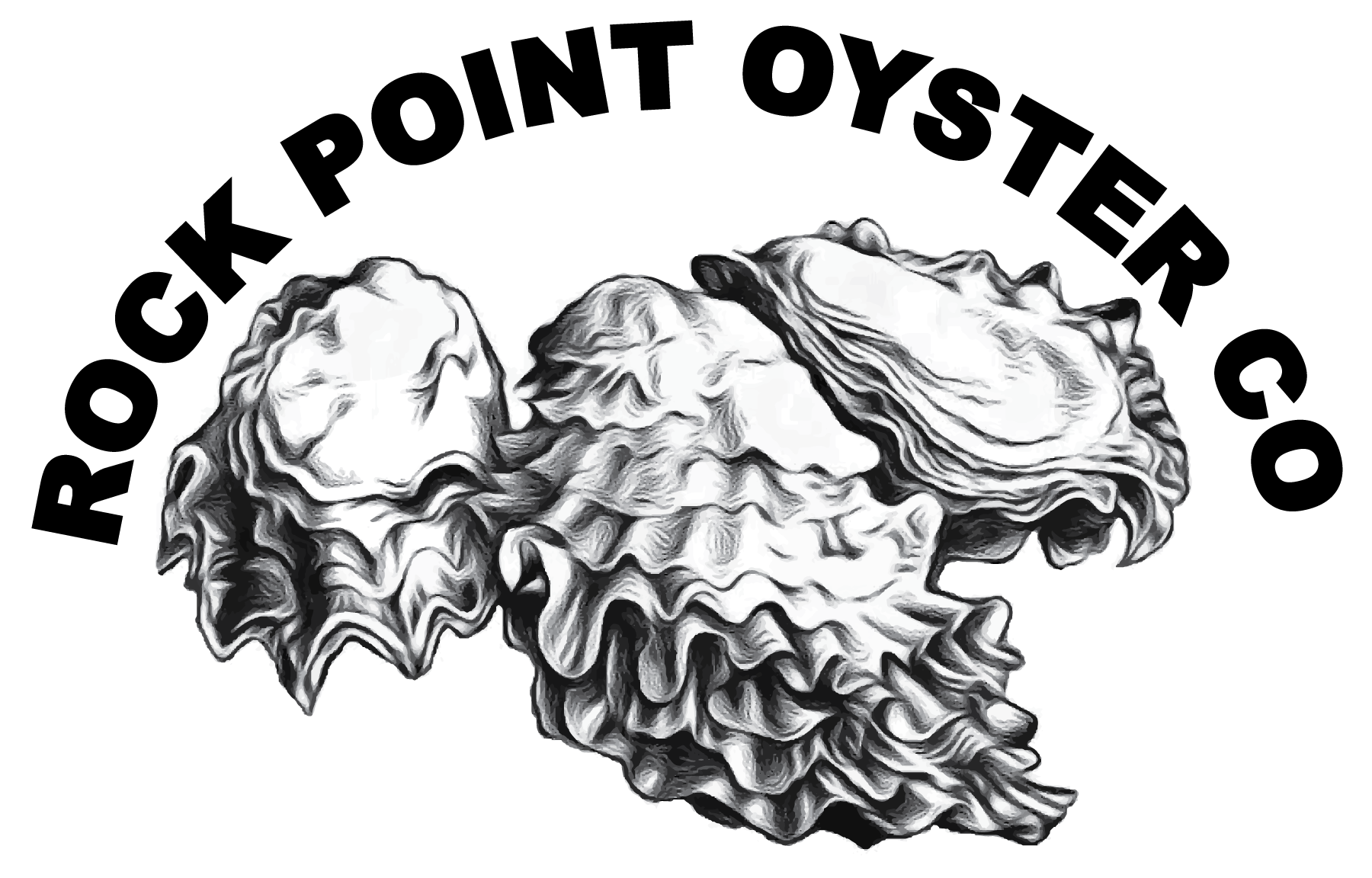 Oyster Tumbler